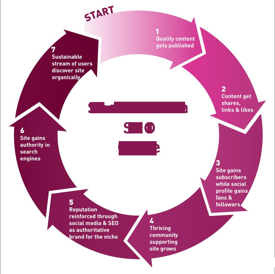 social media seo cycle share