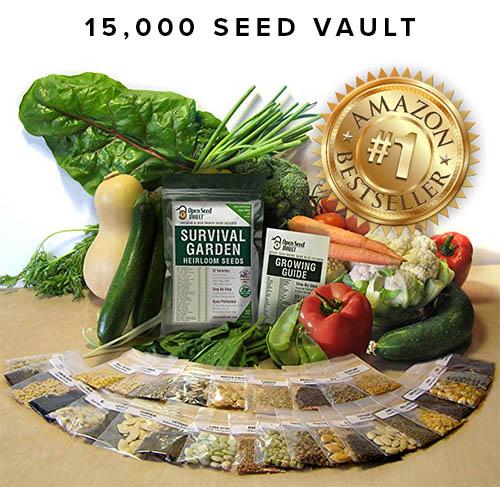 Seed Vault Restore Environment